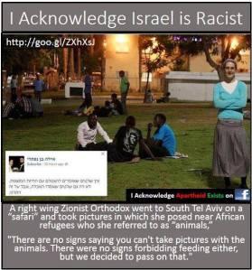 Blacks are animals